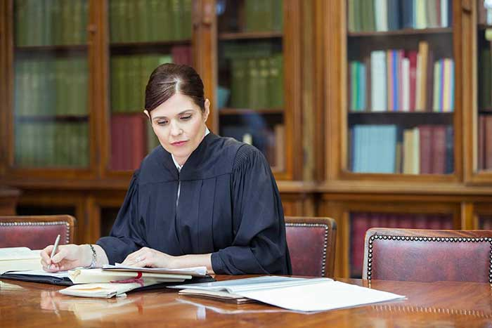 Lady lawyer doing her work